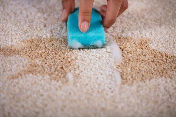 הסרת כתמים משטיחים - מסיר כתמים