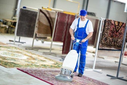 לבחור חברה לניקוי שטיחים